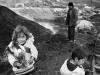 belgesel-yasam-siyah-beyaz-jpg